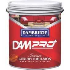 DAM pro+