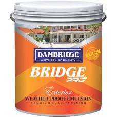 Bridge pro+ shyne
