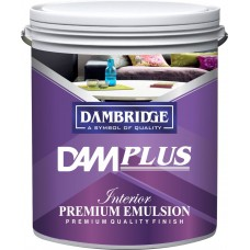 Dam plus