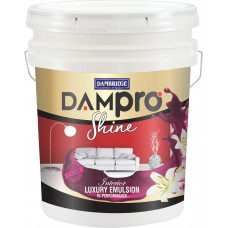 Dam pro+ shyne